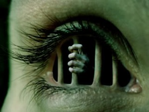 Soma sema. – Image source: http://i30.photobucket.com/albums/c342/fletchertech/New%20WPs/1EyePrisonC.jpg.