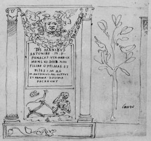 Drawing of the funerary altar for Antonia Panace (CIL VI 12059), including its floral decoration. – Image source: http://db.edcs.eu/epigr/bilder.php?bild=$CIL_06_12059_1.jpg;$CIL_06_12059_2.jpg;$DM_251.jpg&nr=3.
